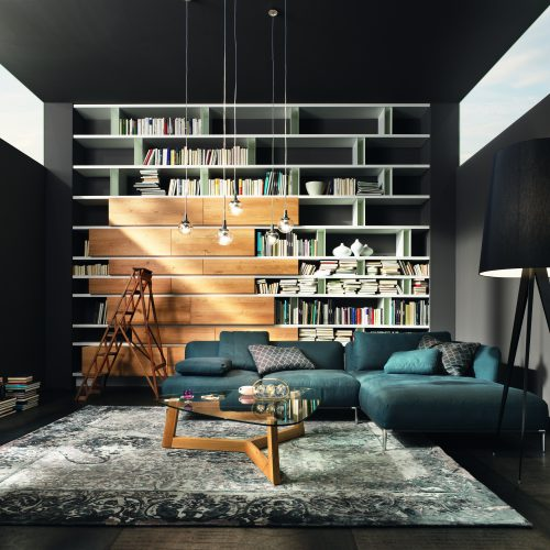 010 Haas - Bibliothek